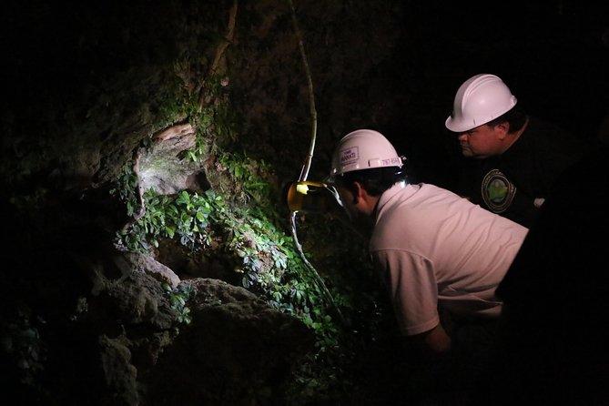 Cueva Ventana Night Exploration