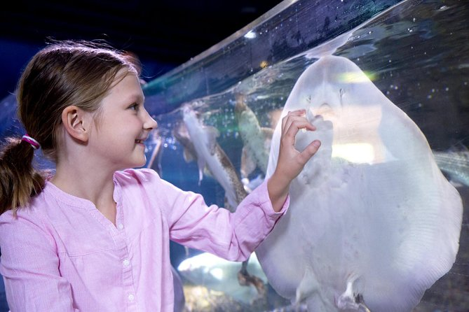Skip the Line: SEA LIFE Charlotte Concord Aquarium Admission Ticket