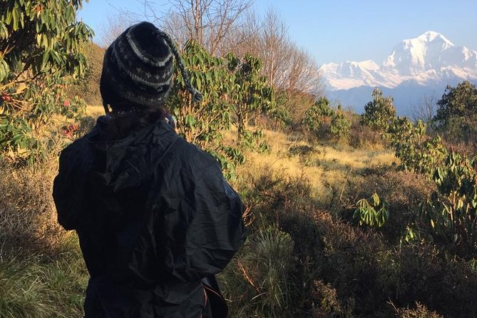 Poon Hill Circuit with Hot Spring Trek from Pokhara