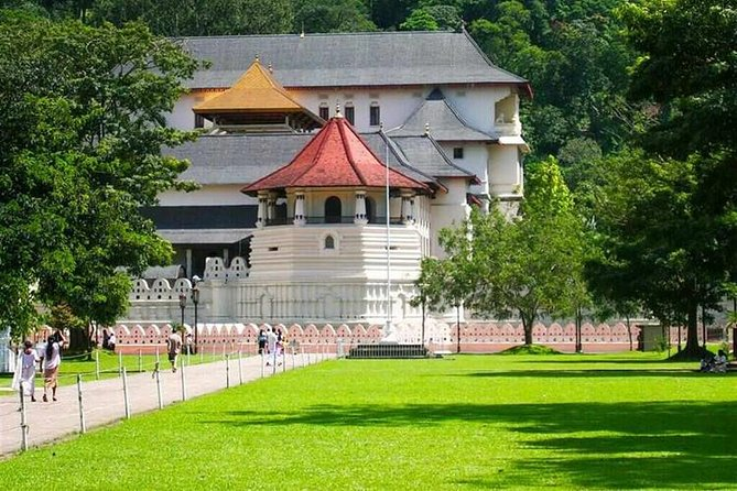 Day Trip to Kandy - All Inclusive Tour