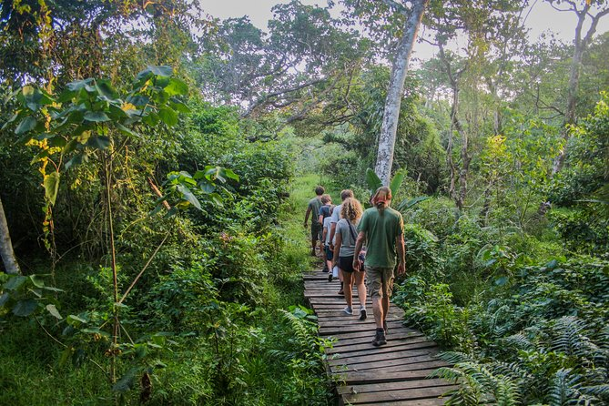 iSimangaliso Guided Walking Safari