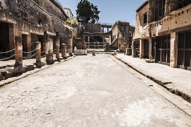 2-Hour Private Guided Tour of Herculaneum