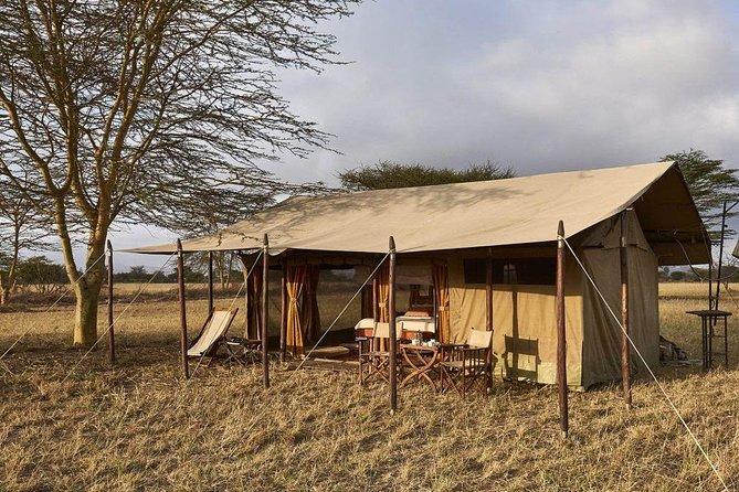 4 Day Adventure Lake Manyara , Serengeti & Ngorongoro