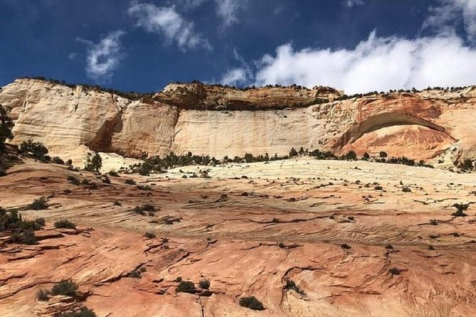 Private and small group tour for Zion National Park , Grand Canyon , Red Rock