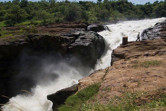 3-Days Murchison Falls safaris