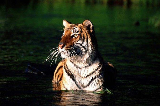Private Tour: 9 Days - World Heritage Tour of Bangladesh, Dhaka, BANGLADES