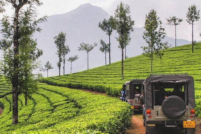 5 Days Kerala Private Tour Package with Houseboat stay