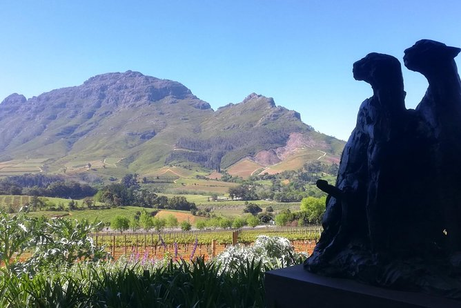 The best of the Cape Winelands enjoying tastings & sublime cuisine photo 1