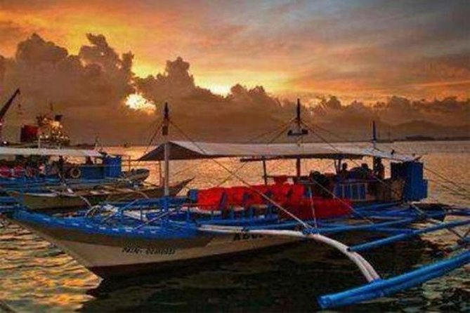 Puerto Princesa: Shared Bay Cruise Dinner & Firefly Watching