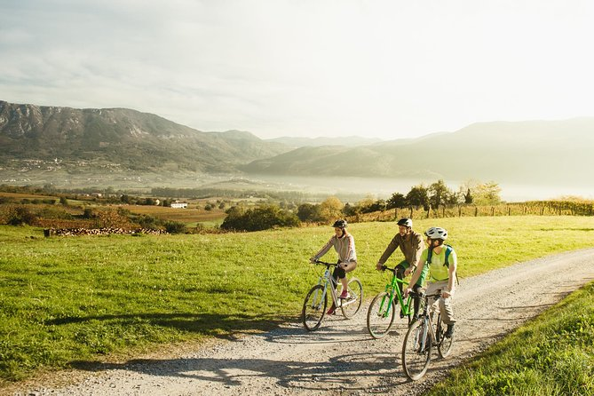 Bike and Wine in Vipava Valley