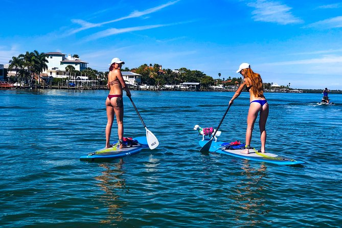 Paddle Board Rental - Full Day (8 Hours) photo 20