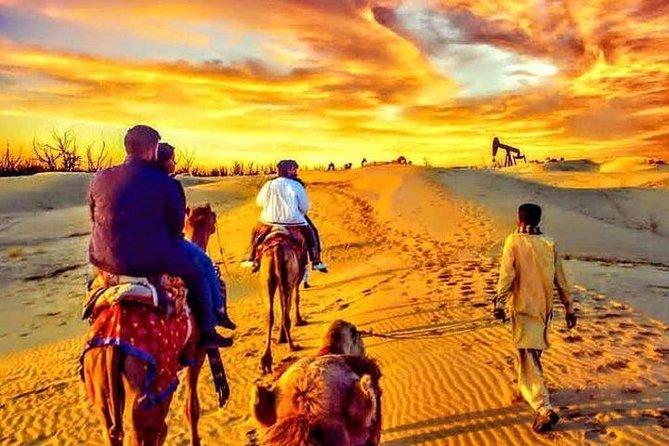 Hummer Desert Safari At Red Dunes With BBQ Dinner Buffet
