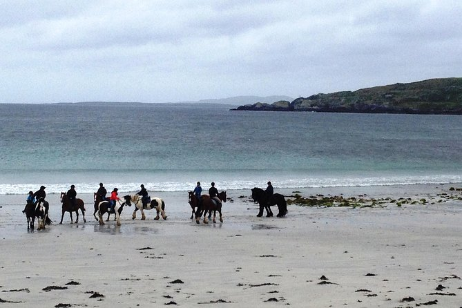 Shore Excursion: Private guided Beach Horse Riding: Wild Atlantic Way Connemara photo 2