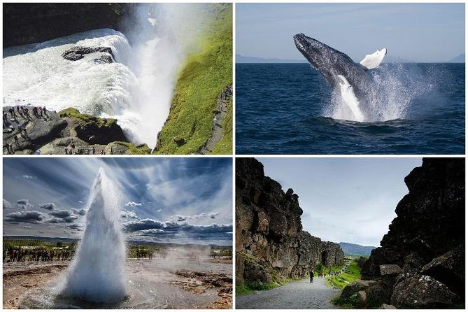 Whale Watching and Golden Circle Tour from Reykjavik