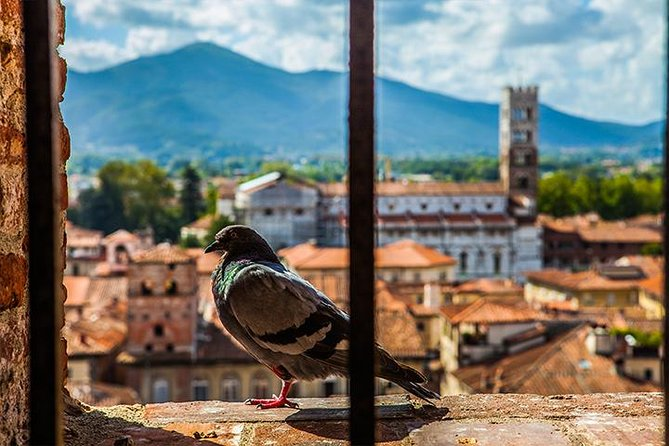 Lucca and Pisa Day Tour from Rome