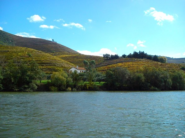 Douro Breathtaking Landscapes Small Group Tour with Lunch and Wine Tasting