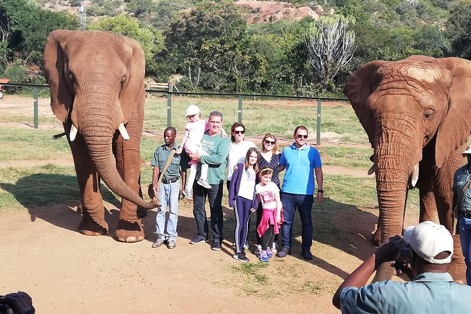 Elephant Walk Guided Tour from Johannesburg R2150 Private photo 2