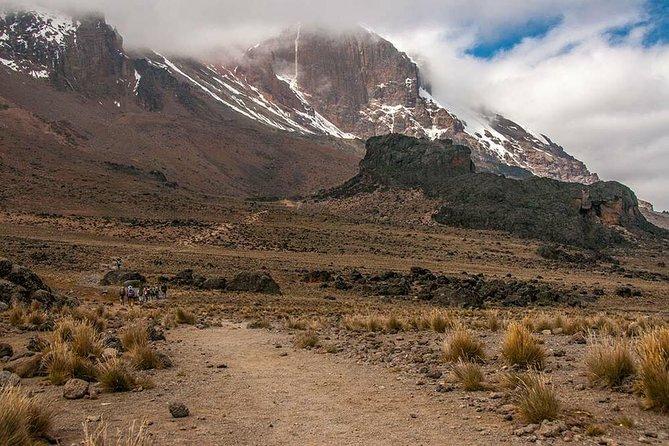 climbing kilimanjaro, kilimanjaro,mt kilimanjaro 9 Days Lemosho route
