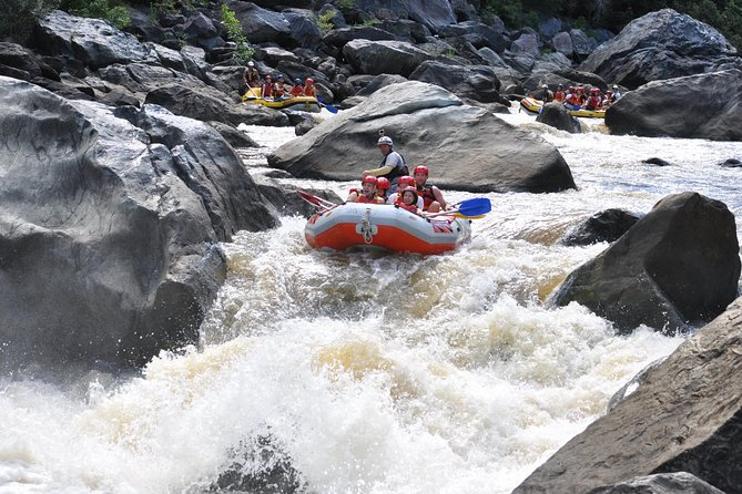Barron River Half-Day White Water Rafting from Cairns photo 6