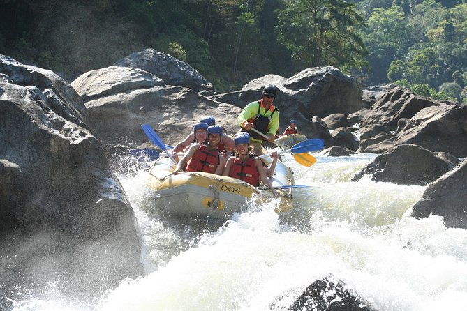 Barron River Half-Day White Water Rafting from Cairns photo 9