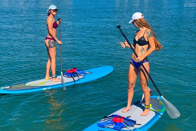 Paddle Board Rental - 1 Hour photo 3