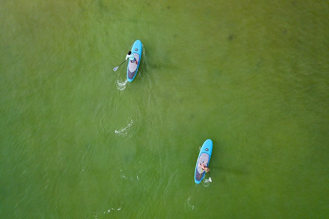 Paddle Board Rental - Full Day (8 Hours) photo 2
