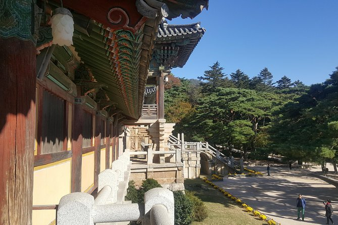 Private tour, 1Day Gyeongju city tour by KTX from Seoul-World Heritage Site