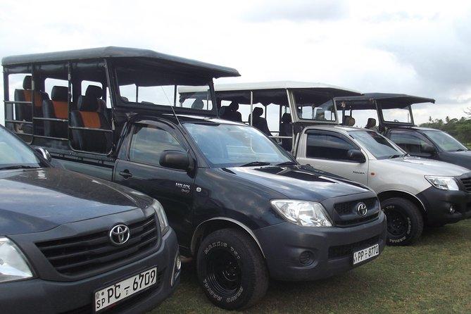 Morning safari - Bundala National Park - 05.30 am to 10.00 Am