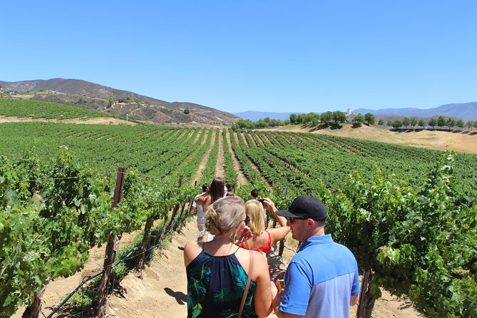 Fun on our Temecula Wine & Vine Tour!