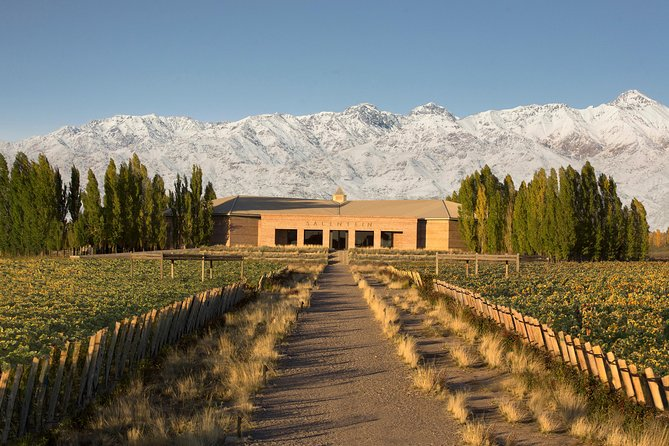 Uco Valley Wine Day Trip from Mendoza