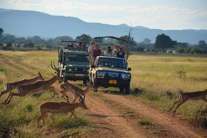 4Days Masai Mara safari