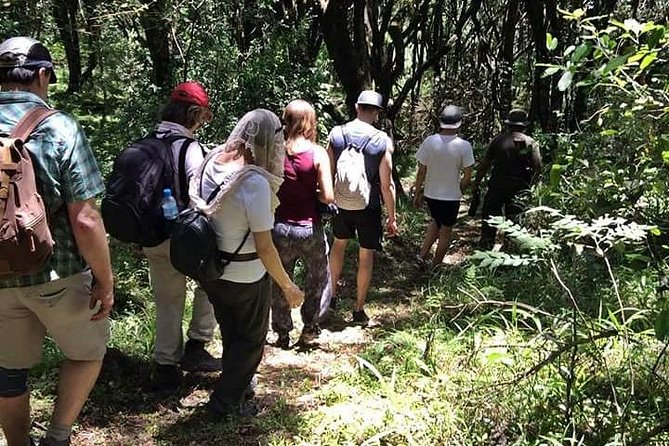 Day Adventure At Arusha National Park