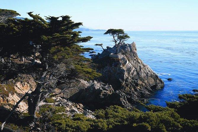 Dagtocht naar Monterey en Carmel via de kust van Californië
