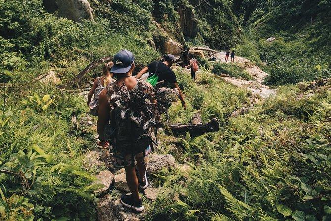 Rainforest El Yunque Tour