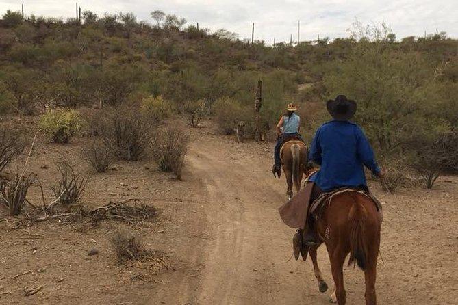 Horseback ride and witness magical sunset of Loreto, BCS