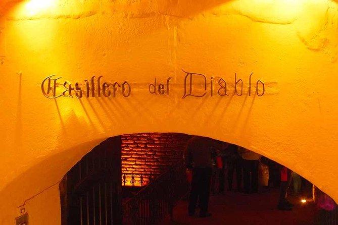 City Tour and Wine Tour Concha y Toro or Santa Rita