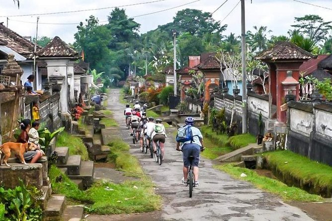 Carang Sari Village Cycling
