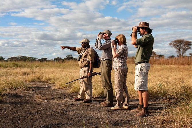 Mikumi National Park Walking And Game Drive Safari From Morogoro