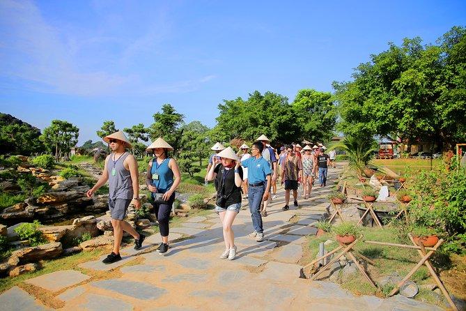 Luxury Hoa Lu Tam Coc Mua Cave Amazing View 1 Day Tour