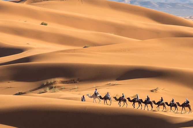 Morocco Desert Tours from Fes to Marrakech via Sahara Desert in 3 days photo 14