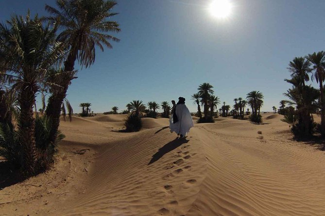Morocco Desert Tours from Fes to Marrakech via Sahara Desert in 3 days photo 13
