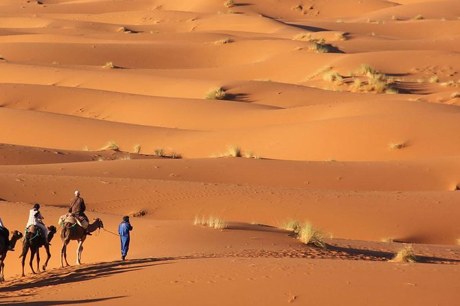 Morocco Desert Tours from Fes to Marrakech via Sahara Desert in 3 days photo 11