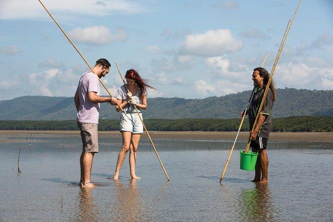 Aboriginal Cultural Daintree Rainforest Tour from Cairns or Port Douglas