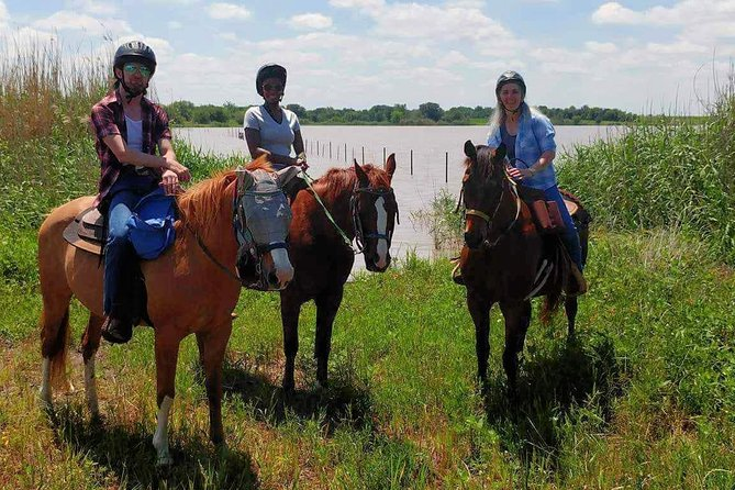 Sunset Trail Horseback Ride in Rockwall