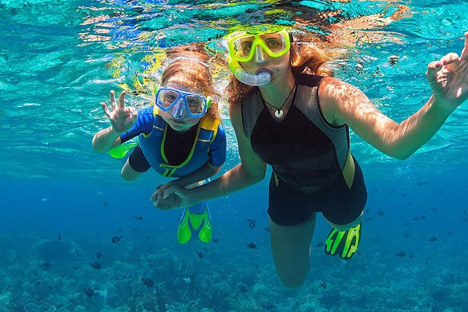 All inclusive Culebra Snorkeling Trip(check in 8am/Call to confirm Tour covid19)
