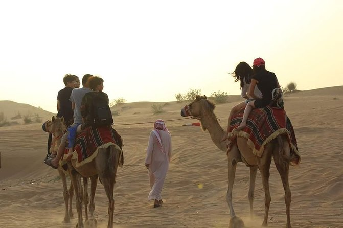 7 star Desert Safari with Live BBQ Dinner with camel ride + Live Activities
