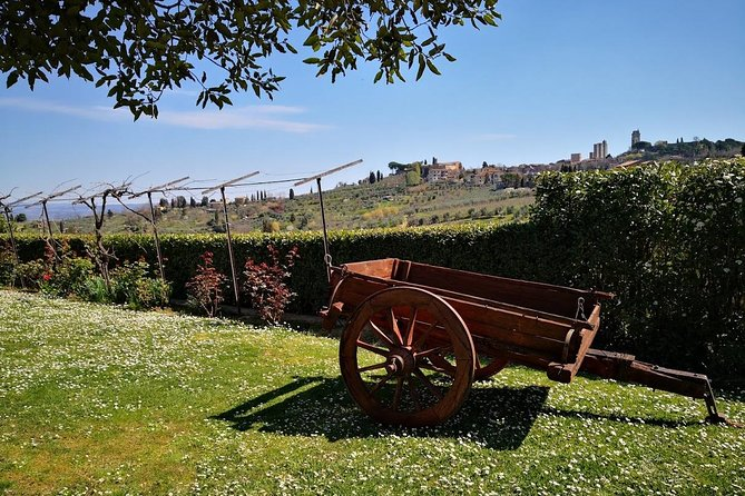 SAN GIMIGNANO and SIENA plus Lunch and Wine tasting TOURS FULL DAY photo 6