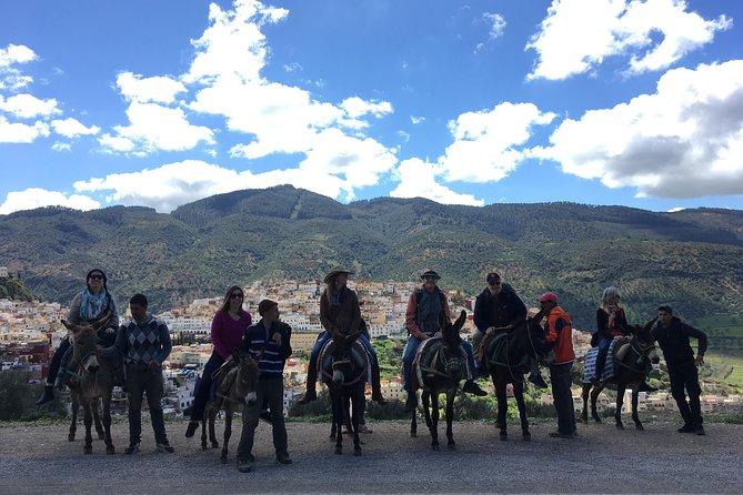 Donkey ride to Volubilis