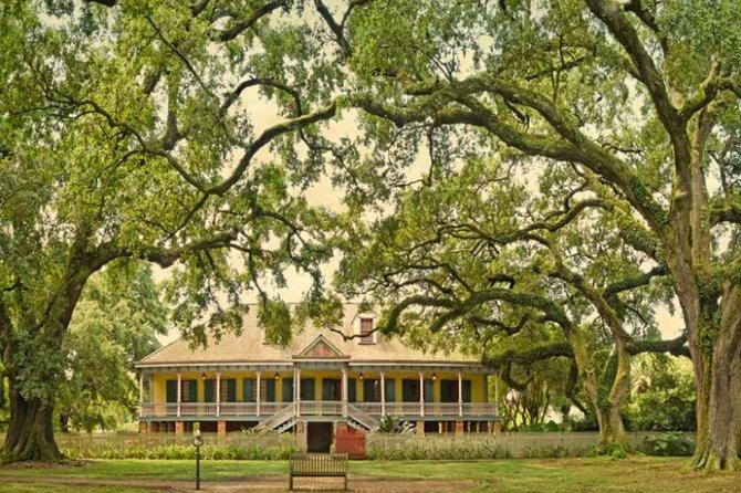 Excursión por la costa de Nueva Orleans: Tour por la plantación Westbank después del crucero