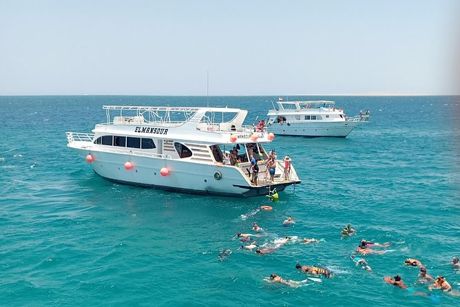 Meet the Dolphins - Snorkeling Tour